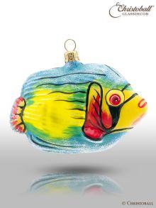 Weihnachtsform - Korallenfisch