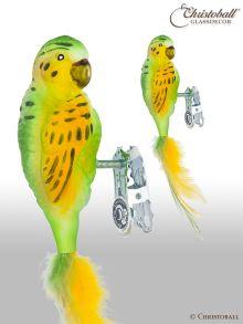Vogel Papagei Wellensittich mit Clip