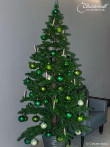 Komplett Set Evergreen Grün