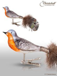 Vogel mit Clip Rotkehlchen