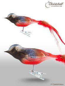 Weihnachtsform Vogel Gartenrotschwanz